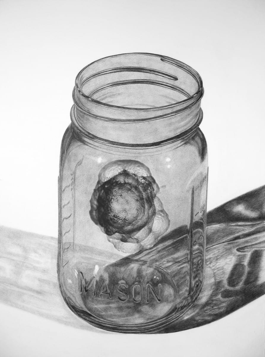 "Michael Schall, Jar, graphite on paper, 30"" x 40"", 2011 *"