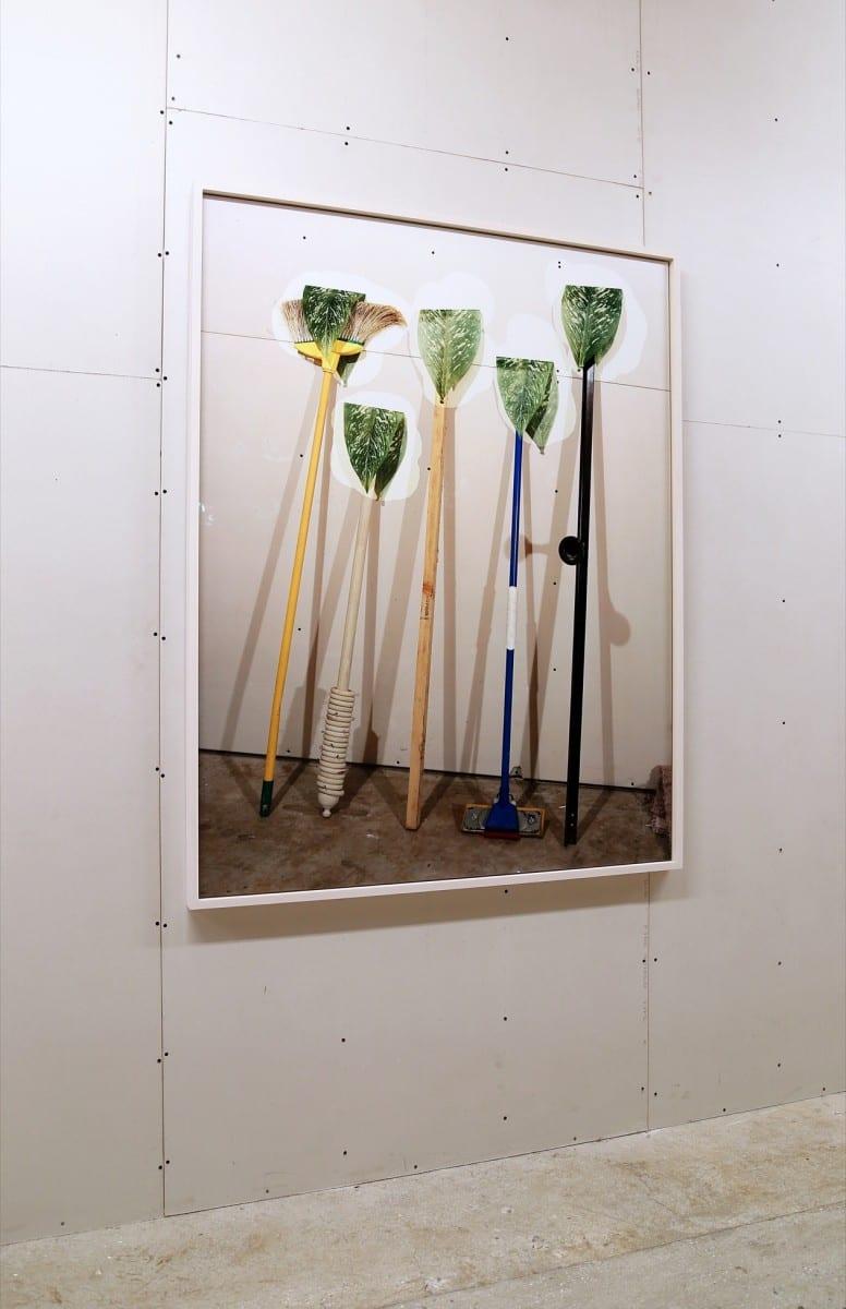 "Lucas Blalock,  Plants, Chromogenic print, 60"" x 48"", edition 1 of 3 plus 2 APs, 2013"