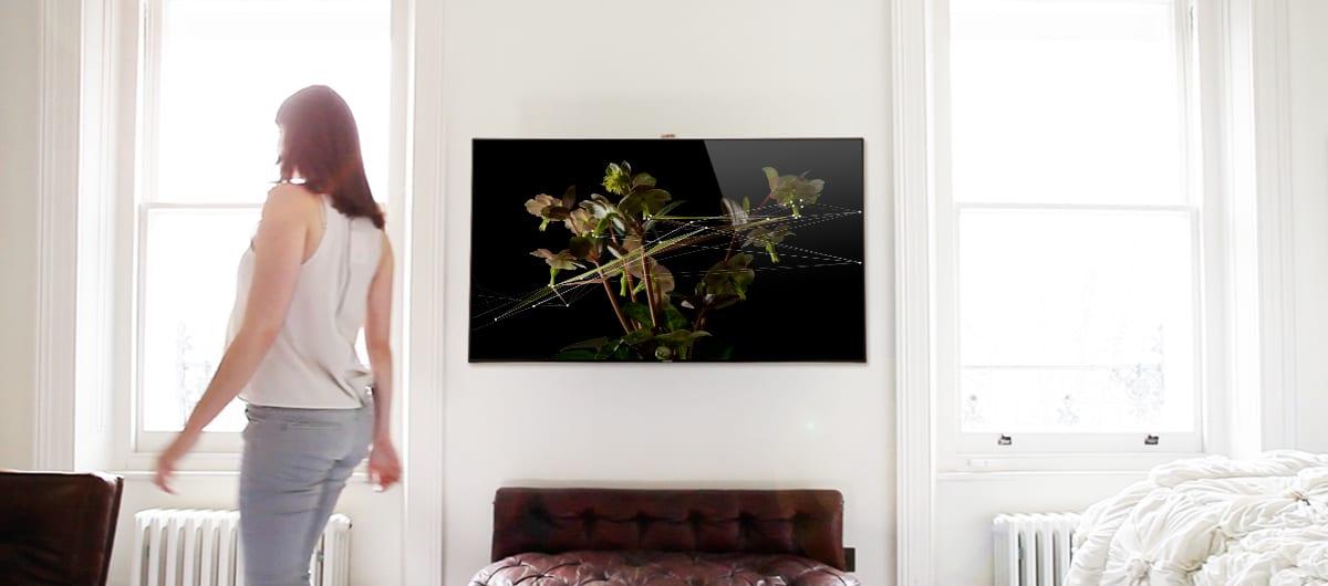 5.  Quayola-Natures2-displayed-on-TV