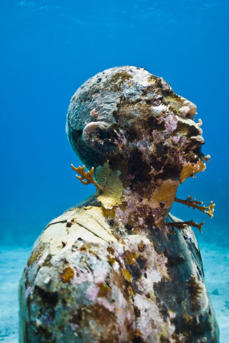 Jason Decaires Taylor S Curated Ocean
