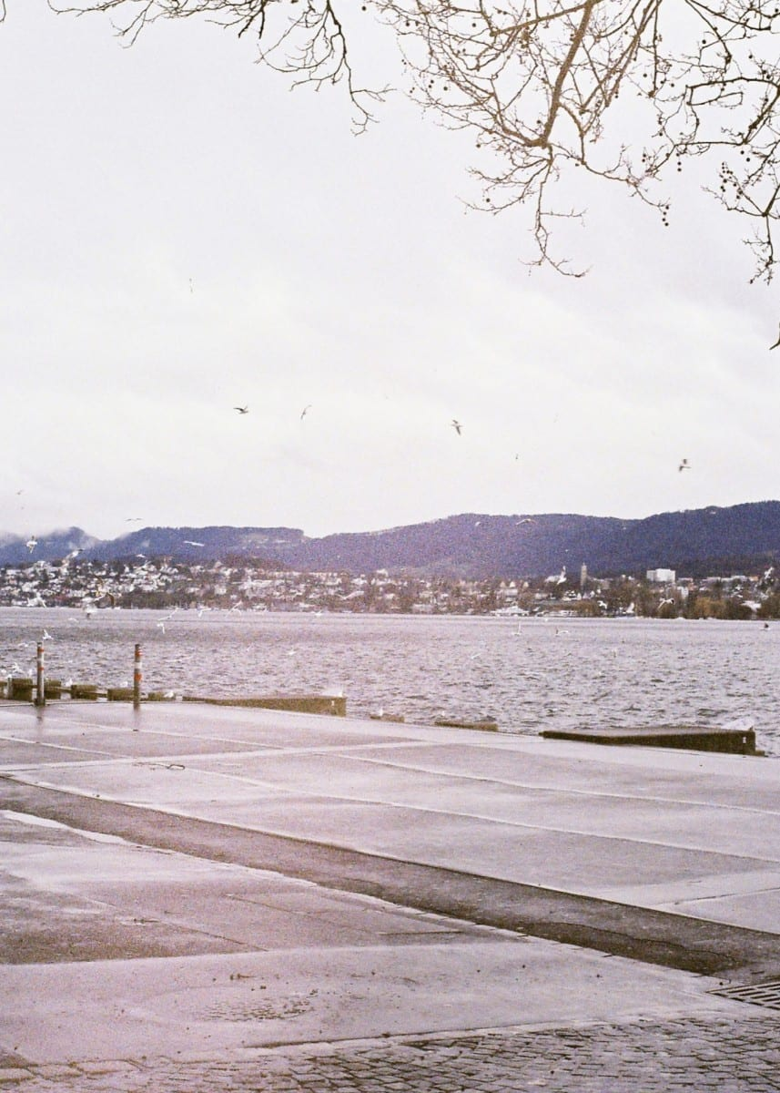 Clara Balzary, Zurich Triptych, photograph © of the artist and The Tappan Collective