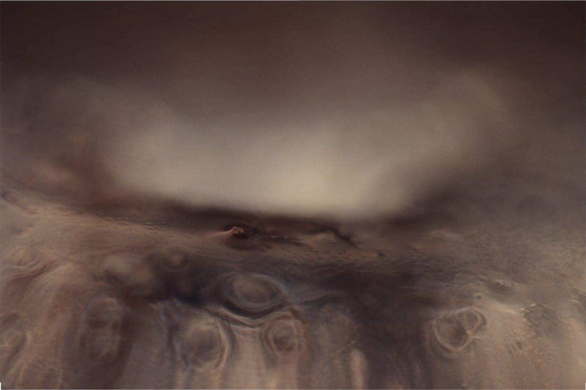 "Alyson Denny, Jellyfish Picture No. 21, color photograph, 30x40"", 2001"
