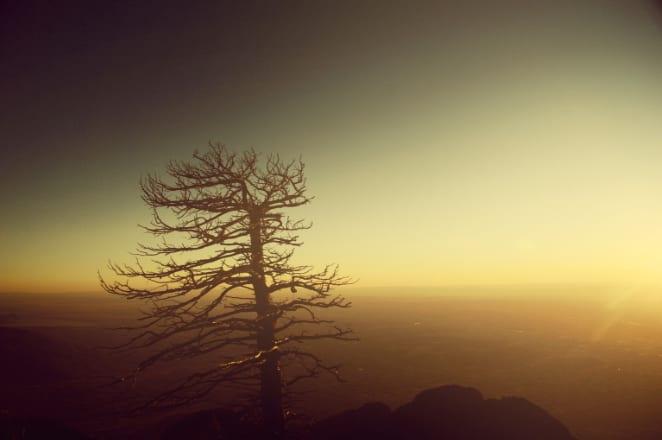 Sandia Peak, NM.