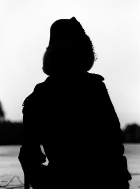 Silhouetted no. 12