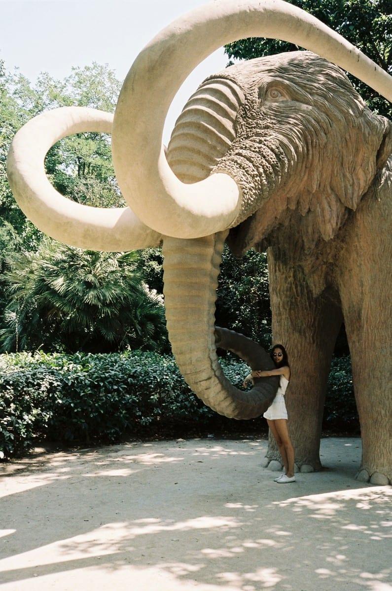 Emma Le Doyen, Bams au Zoo, 2013