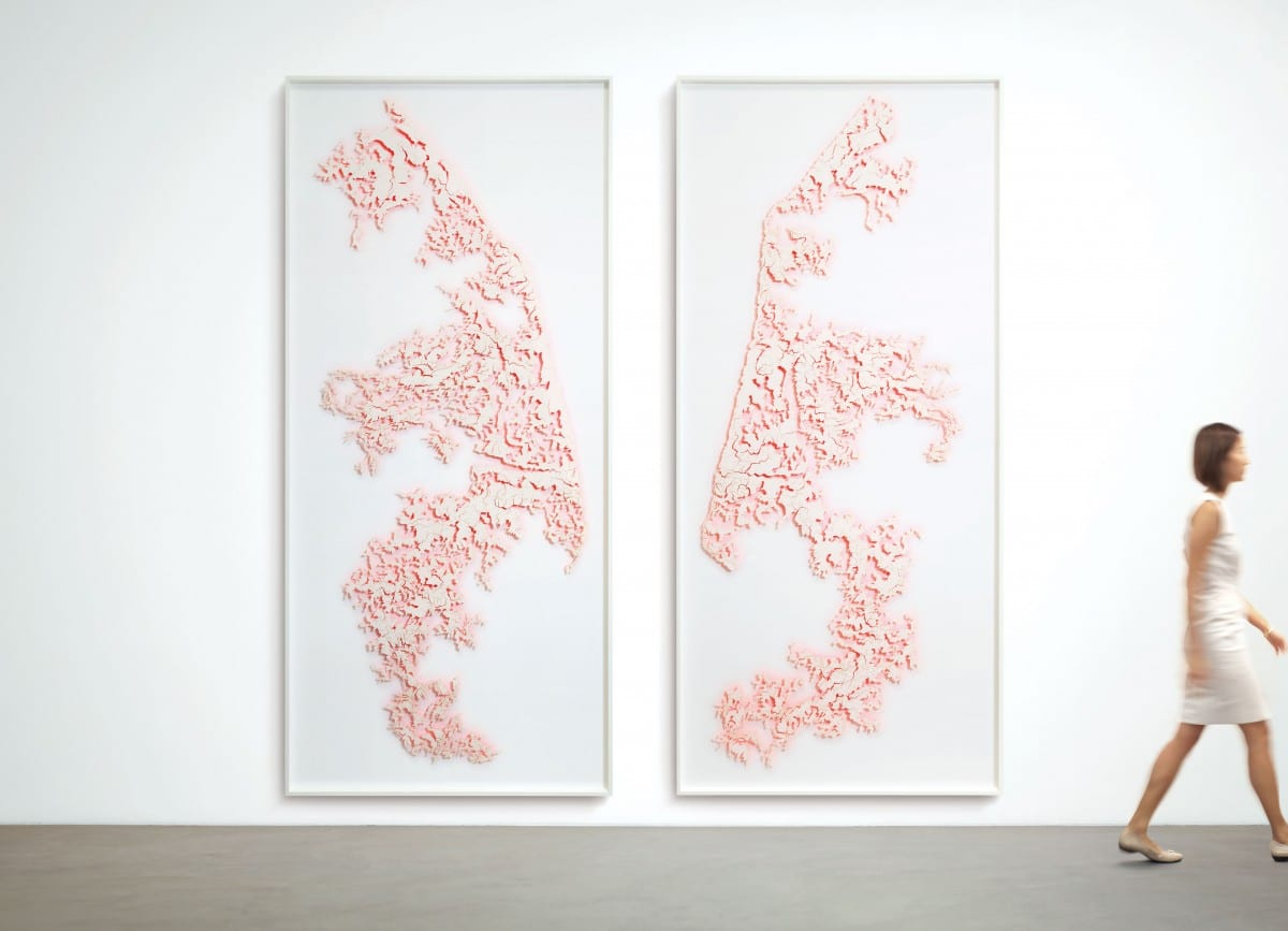 """David Adey, Hide, laser-cut paper, fluorescent, acrylic and pins on 2 pac foam panels, 120"""" x 54"""" (each panel), 2013"""