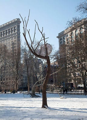 Installation view of Giuseppe Penone's Ideas of Stone (Idee di pietra) in Madison Square Park, 2013, photography by Malcolm Varon, © of Madison Square Park Conservancy