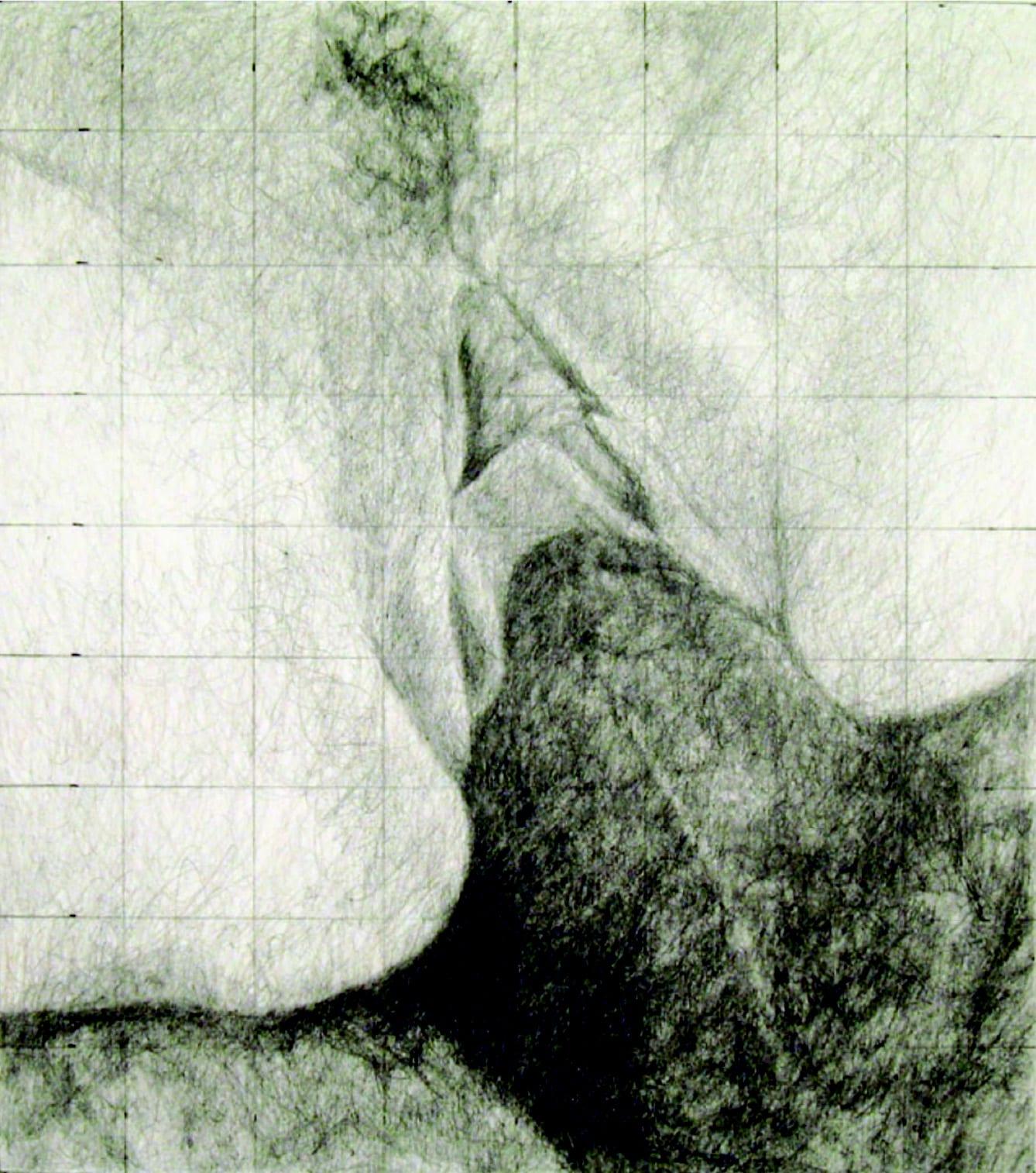"Betty Tompkins, Fuck Grid #43, 17"" x 14"", 2008"