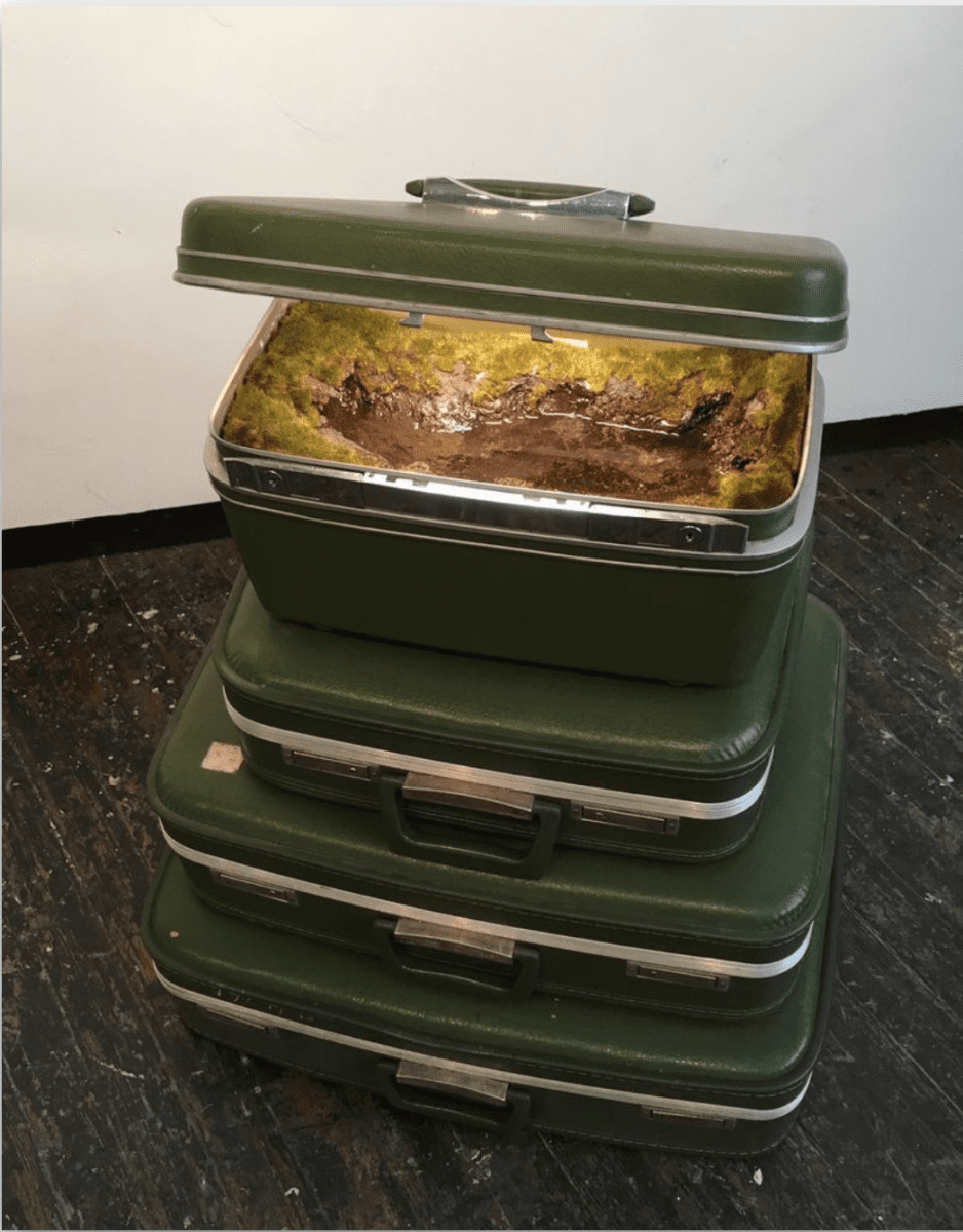 Kathleen Vance, Green Stack, 2017, Vintage luggage, resin, soil, artificial foliage, water, 30 x 23 x 16 in.